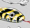 Бриллиантовый глаз Змеи на монете из Австралии