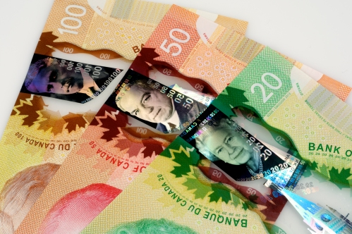 Canada Polymer Notes 2013