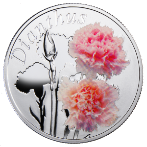 """Серебряная монета """"Гвоздика"""" 10 рублей Беларусь 2013"""